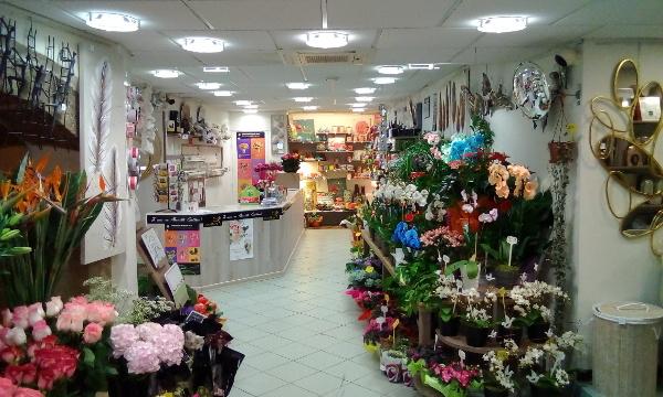 Farandole fleurs - image 1