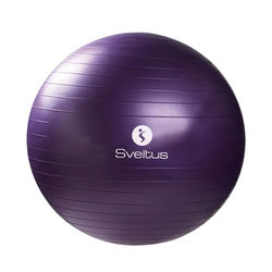 GYMBALL 75CM VIOLET