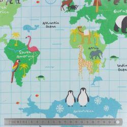 Tissu enduit Carte du monde (x10cm)