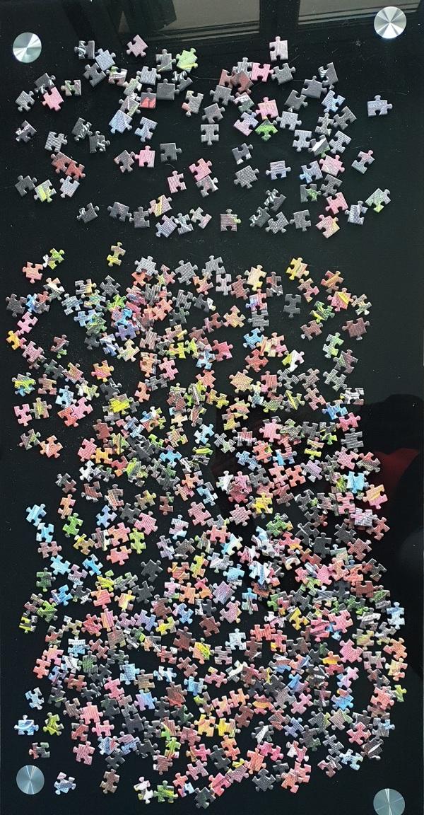 PUZZLE 500 pièces : L'Origine - image 1