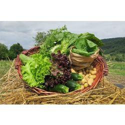 Panier de légumes d'été Bio (environ 3 kg)