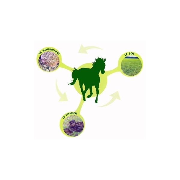 Supplément alimentaire / flore intestinale chevaux Proferm 5Kg - image 2